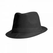 כובע מגבעת ממותג