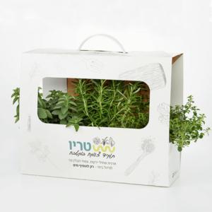 טריו - צמחי תבלין למטבח מארז