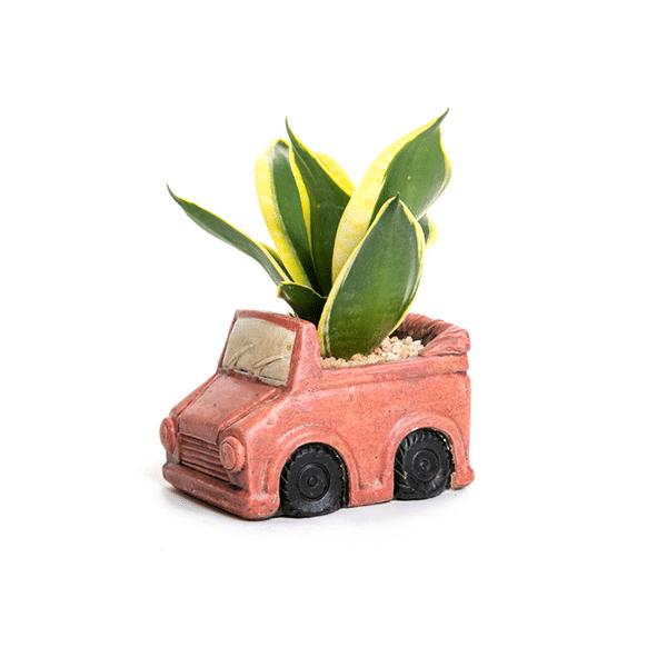 עציץ בעיצוב רכב אדום