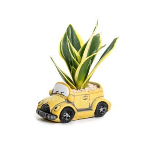 עציץ רכב וינטג צהוב